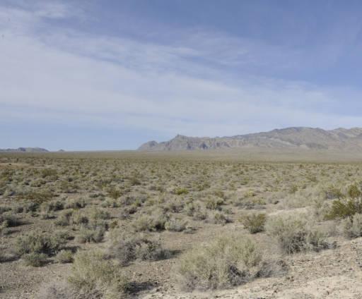 - Image Desert -