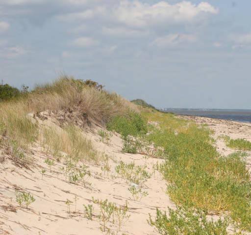 spirituality religion Beach