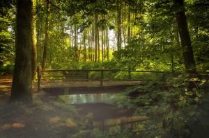 bridge spiritual