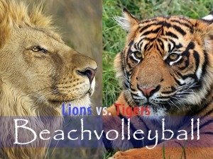 lions versus tigers minigames